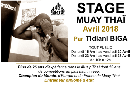STAGE TECHNIQUE DE MUAY THAI AVEC TIDIANI BIGA.